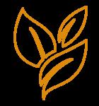 duurzaamheid-oranje_organic